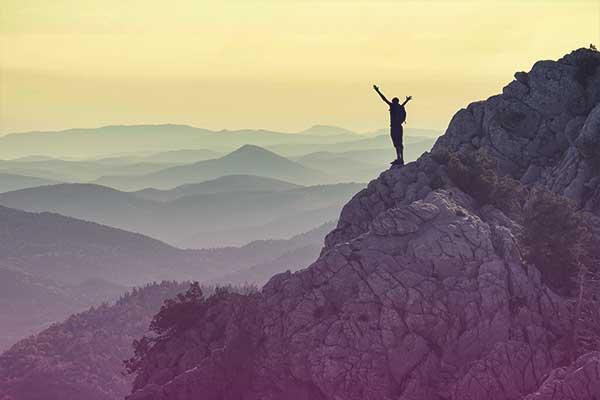 seeking a higher purpose