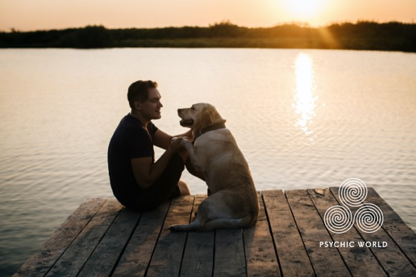 man and labrador cuddling on a bridge on top of a lake